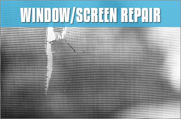 Window / Screen Repair